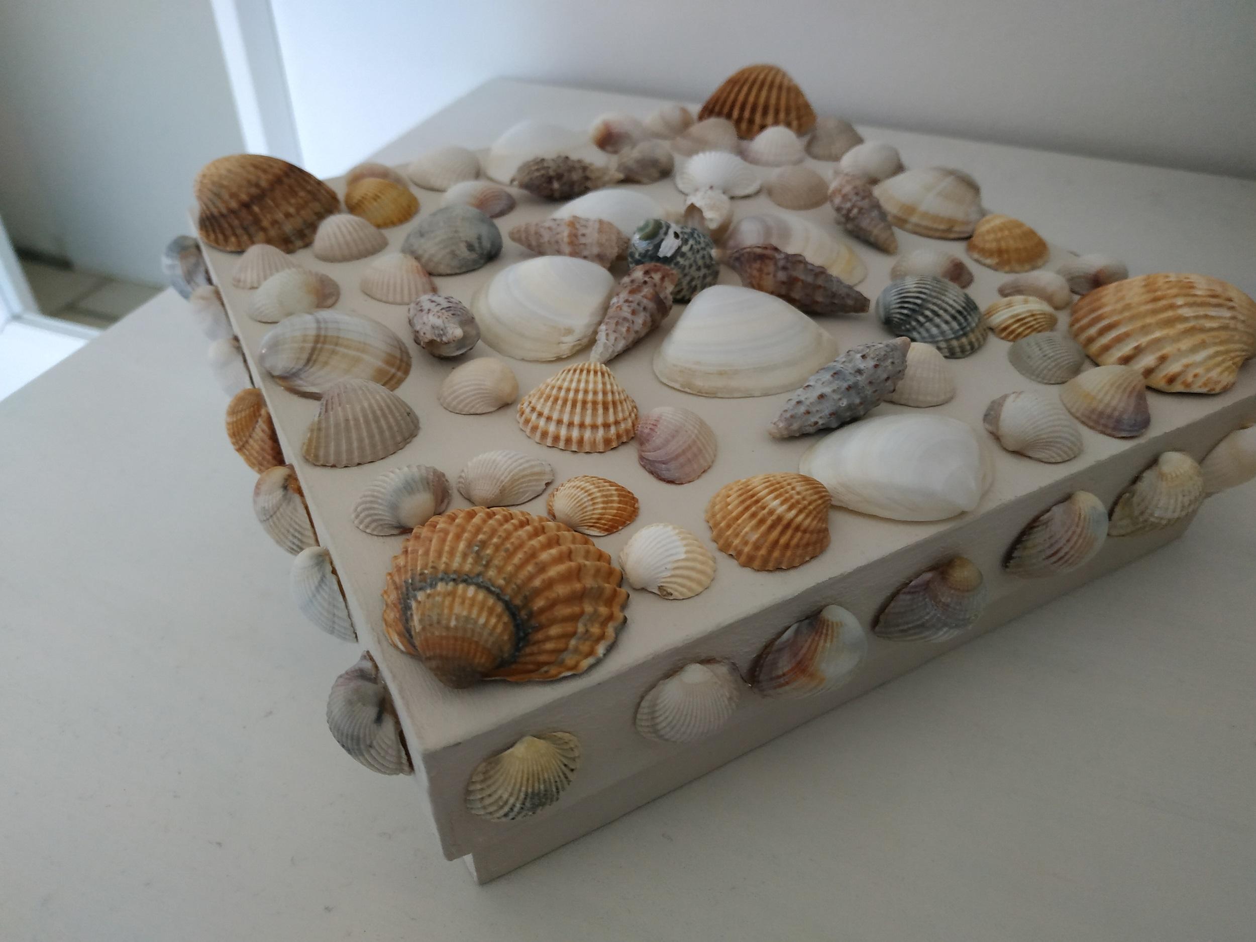 Atelier Abricadabroc: La boîte coquillages |