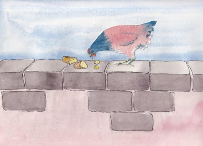 Une poule sur un mur !  